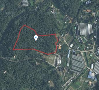 고양시 덕양구 선유동 7,373평 토지